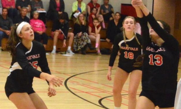 Lions roar in latest VSN Volleyball Top 20