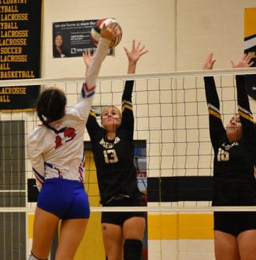 Vikings craft Top 10 spot in VSN Volleyball Top 20 poll