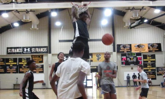 Flying high at Black Panther Fall League